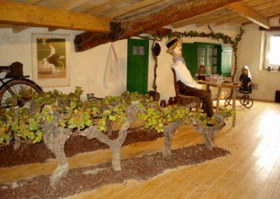 Les Ormeaux - pineau - cognac - Musée vigneron02